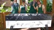 Kicker mit Unterschriften und Gartengruppe